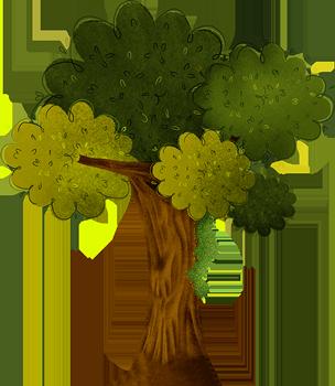Arbol - magic forest